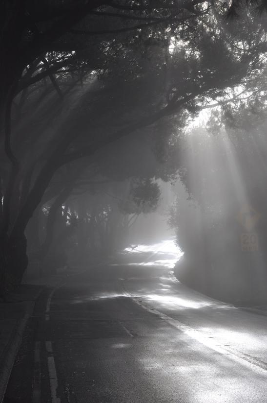 Miraleste Highway - Rancho Palos Verdes, California