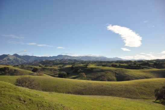 Green Hills and Skyline - Los Olivos, California