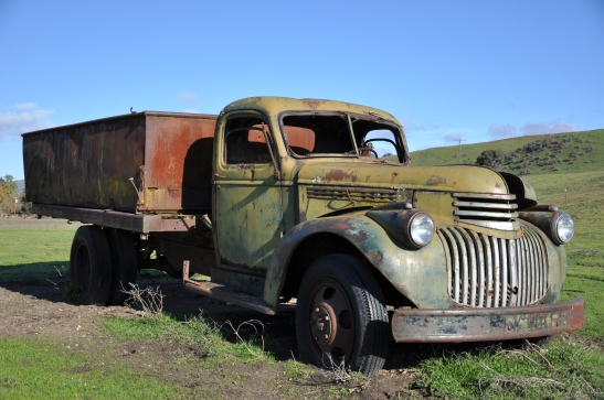 1946 Chevy Truck in a field between vineyards - Los Olivos, California