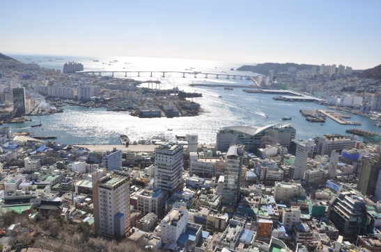 View from Busan Tower - Photo 1