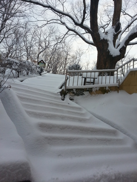 Stairs to my classroom. Quite slippery!