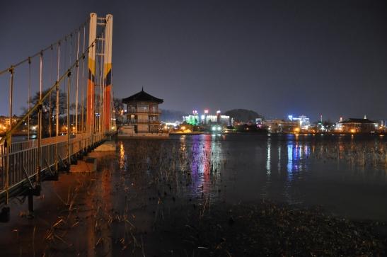 Deokjin Park at Night