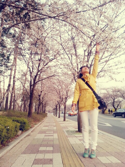 Michelle reaching for cherry blossoms