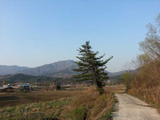 Namyangju Landscape