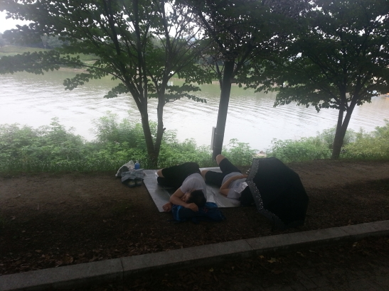 Couple passed out by river