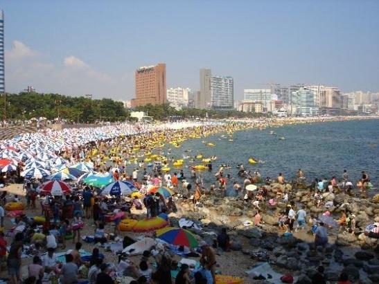 Busan Summer