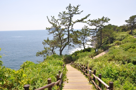 Olle Trail, Seogwipo