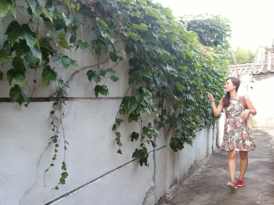 Michelle examining the vines