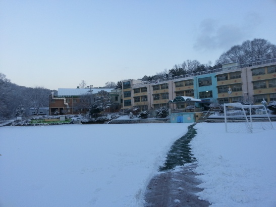 Snow covered Ground - Wolgot Elementary School