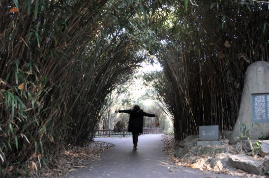 Bamboo City on Odongdo