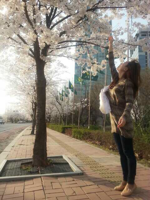 (15) Michelle Reaching for Cherry Blossoms