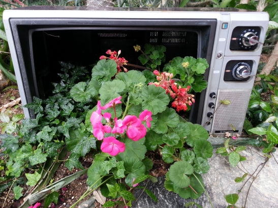 (6) Flowers in Old TV