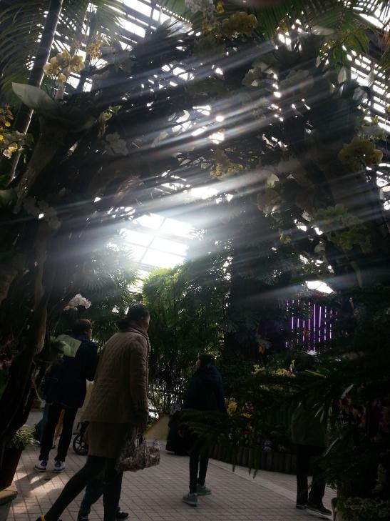(9) Inside Gwachon Botanical Garden