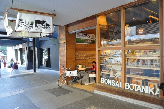(7) Bonsai Botanika, Brisbane