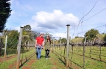 (9) Michelle and I in vineyard